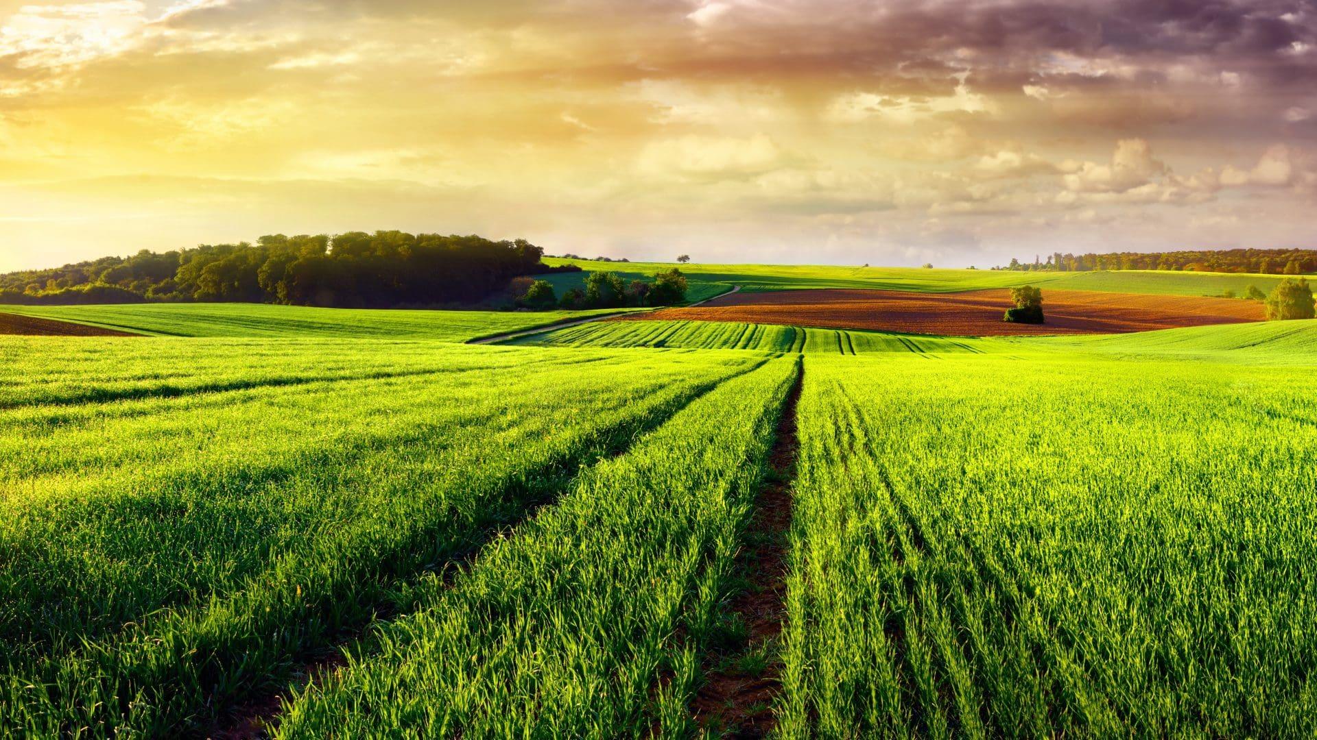 Rešenja Za Poljoprivredu