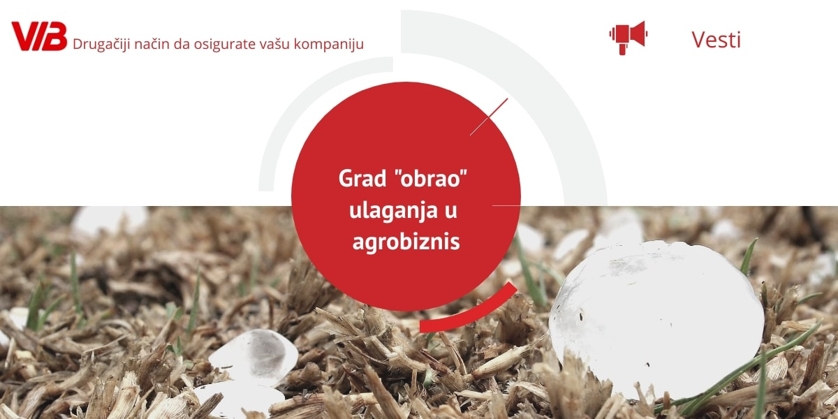 Grad Obrao Ulaganja U Agrobiznis – Zasadi Voća Uništeni